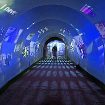 Orig_SeeShell Tunnel-Interior-Video